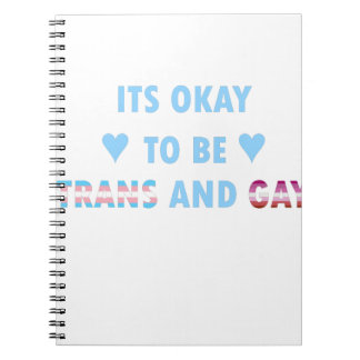 It's Okay To Be Trans And Gay (v3) Notebook