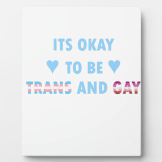 It's Okay To Be Trans And Gay (v3) Plaque