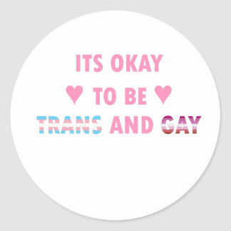 It's Okay To Be Trans And Gay (v4) Classic Round Sticker
