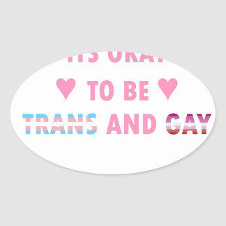 It's Okay To Be Trans And Gay (v4) Oval Sticker