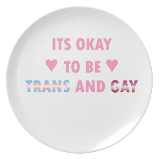 It's Okay To Be Trans And Gay (v4) Plate