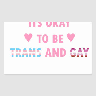 It's Okay To Be Trans And Gay (v4) Sticker