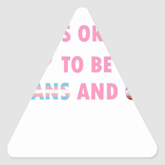 It's Okay To Be Trans And Gay (v4) Triangle Sticker