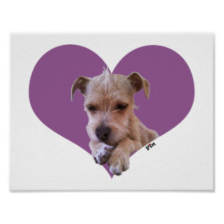 It's Puppy Love!! Too Cute-Puppy Poster Wall Decor