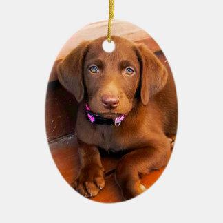 It's Sadie! Henry's_World_Today's Best Buddy Ceramic Ornament