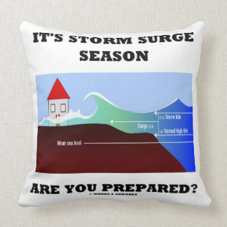 It's Storm Surge Season Are You Prepared? Throw Pillow