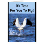 It's Time For You To Fly! Graduation Card