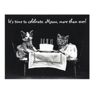 It's Time To Celebrate Cat Postcard
