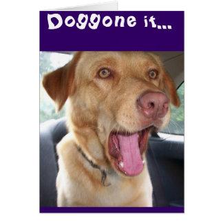 It's yer birthday doggone it! card