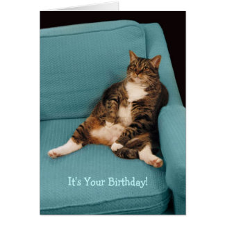 It's Your Birthday Big Fat Tabby Cat Greeting Card