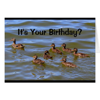 It's Your Birthday? Well That's Just Ducky! Card