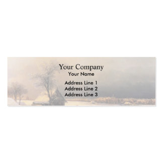 Ivan Aivazovsky- Moscow in Winter, Sparrow Hills Pack Of Skinny Business Cards