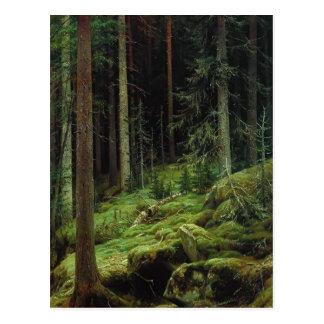 Ivan Shishkin- Thickets Postcard