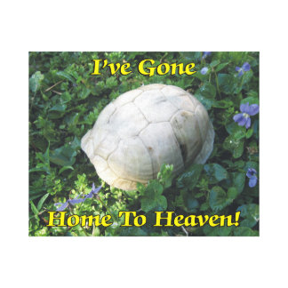 I've Gone Home To Heaven Turtle Shell Canvas Print