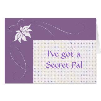 I've got a secret pal greeting card
