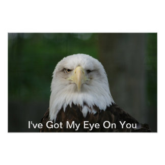 I've Got My Eye On You, One-Eyed Eagle Poster