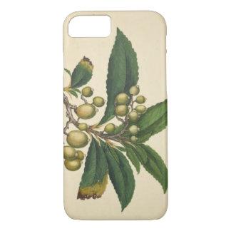 Ivie Glossy Phone Case