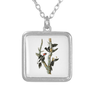 Ivory-billed Woodpecker Audubon Birds of America Silver Plated Necklace