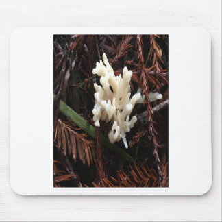 Ivory Coral Fungus Mouse Pad