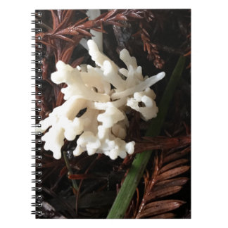 Ivory Coral Fungus Notebook