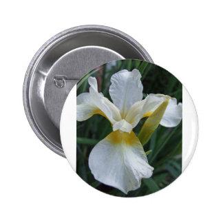 Ivory Iris 2 Inch Round Button