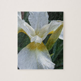 Ivory Iris Puzzle