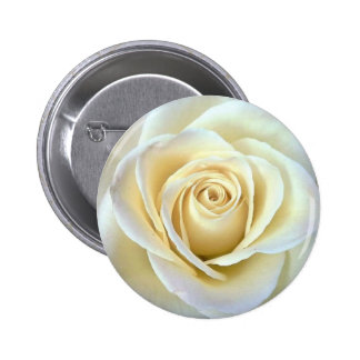 Ivory Rose 2 Inch Round Button