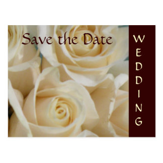 Ivory Roses Wedding Save the Date Postcard