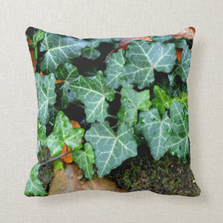 Ivy and Field Stones Throw Pillow