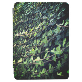 ivy iPad air cover