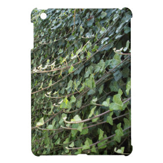 ivy iPad mini covers