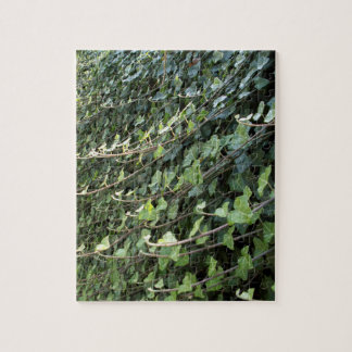 ivy jigsaw puzzle
