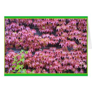 Ivy Leaques Card