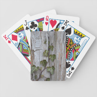 Ivy on a Wall Bicycle Playing Cards