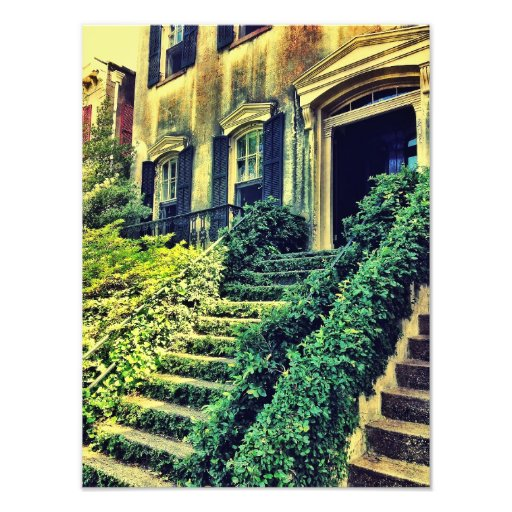 Ivy Stairs Photographic Print