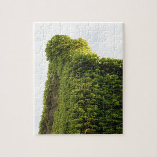 Ivy to the Sky Jigsaw Puzzle
