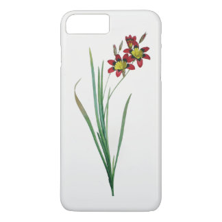 Ixia Tricolor iPhone 7 Plus Barely There Case