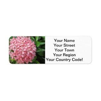 Ixora Pink Garden Plant Return Address Label