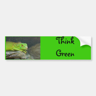 Izzy Iguanna Bumper Sticker