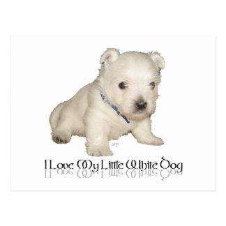 J aime mon petit chien blanc - chiot de Westie Carte Postale
