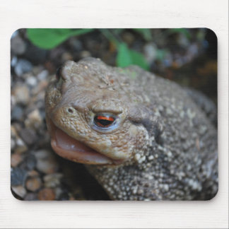 Jabba the Toad Mouse Pad