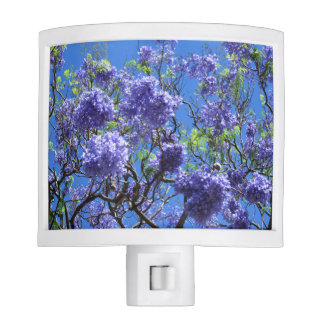 Jacaranda Tree Night Lite