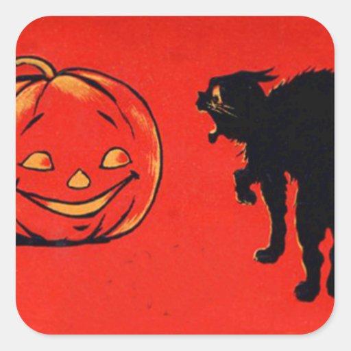 Jack O Lantern Pumpkin Black Cat Square Sticker