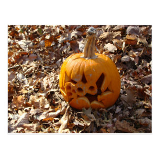 Jack o lantern pumpkin in leaves postcard