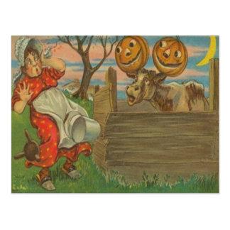 Jack O Lantern Pumpkin Moon Cow Farm Milking Postcard