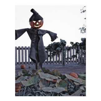 Jack O Scarecrow in a Pumpkin Patch Letterhead