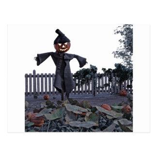 Jack O Scarecrow in a Pumpkin Patch Postcard