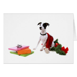 jack russel and Christmas, Card