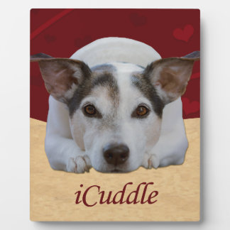 Jack Russel iCuddle Plaque