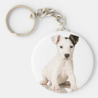 Jack Russel terrier Basic Round Button Keychain